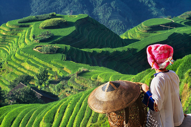 Zhuang Girl with Longji Rice Terraces